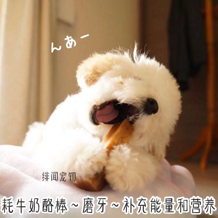 Консервы для собак Артикул 581628008774
