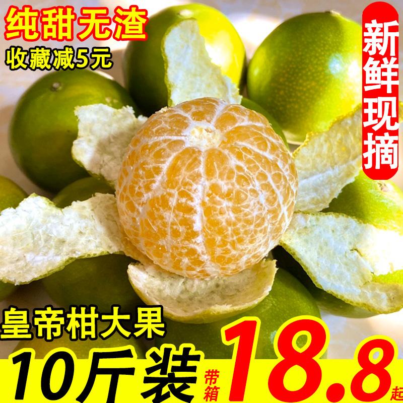 广西大果10斤当季薄皮蜜桔沃皇帝柑