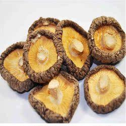香菇干货特产 500g云和梯田农产品食用菌类农家土特产干货小 香菇