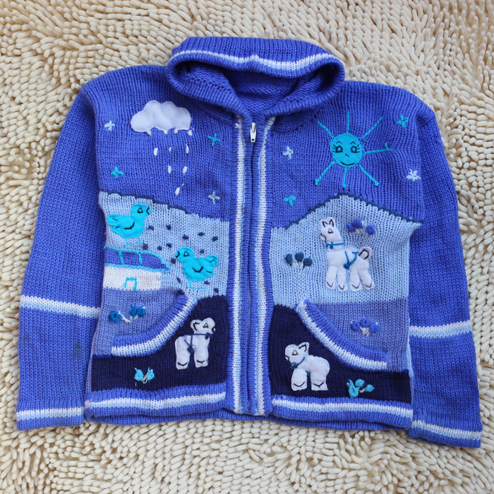 Foreign trade childrens mens and womens spring clothes big childrens sweater hooded 7 cartoon 8 chicken 9-year-old pasture Baiyun orphan sweater