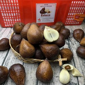 印尼特产新鲜进口发顺丰空运蛇皮果