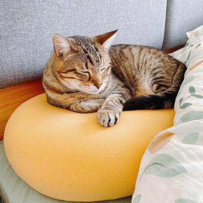 网红爆款猫肚皮记忆棉不塌陷护颈枕头