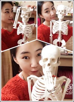 医学教学人体骨骼模型45CM厘米 85CM骨骼模型骨架 小针刀诊所脊柱