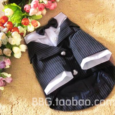 Специальные englon Ветер Тедди одежда Одежда собака, животное одежда питомца, чем Лондон медведя куклы костюм костюмы
