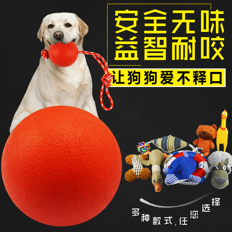 Dog toy ball, molar, biting, screaming, plush, cotton rope toy, Teddy, golden fur, puppy pet toy