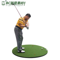 KING PAR Golf strike pad indoor outer swing practice pad round encryption grass Golf strike pad