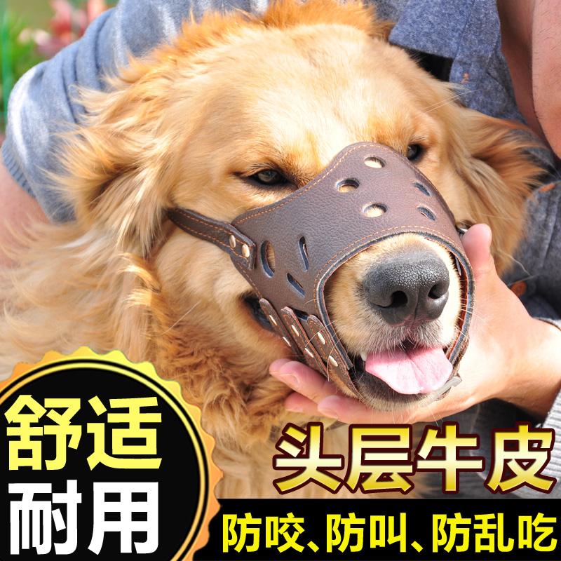 Собака рот против называемый собака противо укусить маски противо случайный есть крупных собак щенок тедди золото волосы домашнее животное собака статьи собака крышка