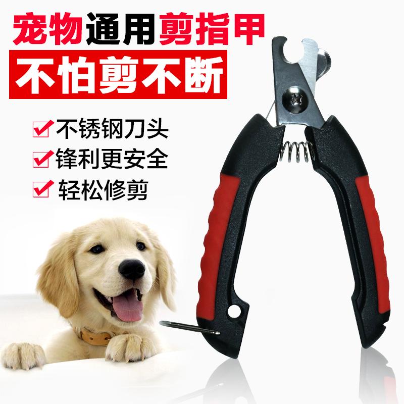 Собака ноготь ножницы коты микрофон ноготь ножницы домашнее животное ноготь плоскогубцы щенок тедди золото волосы кот ножницы ноготь нож