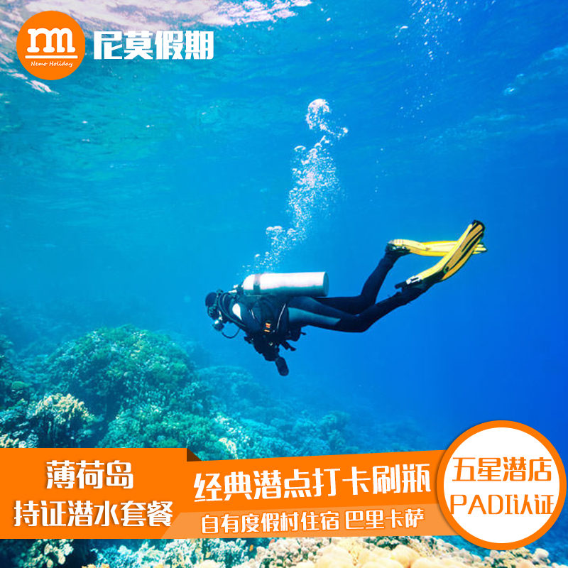 Philippine peppermint Island hot wave dive reservation licensed diving experience package FD happy dive barikasa Island