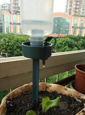 Автоматическая лить вода лить цветок семья использование кола бутылка автоматическая капающий устройство бездельник из разница регулируемый течь
