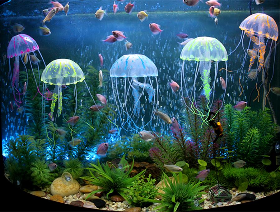 Наполнение для аквариума Артикул 36446846505