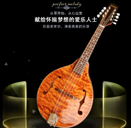 New day cat shop genuine Molin Molin Western musical instruments Molin manufacturers direct mail
