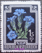 New one stamp in Austria in 1948 flowers Collection of foreign stamps