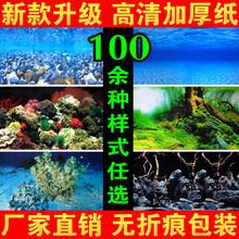 Оборудование для аквариума > Украшения для аквариума.