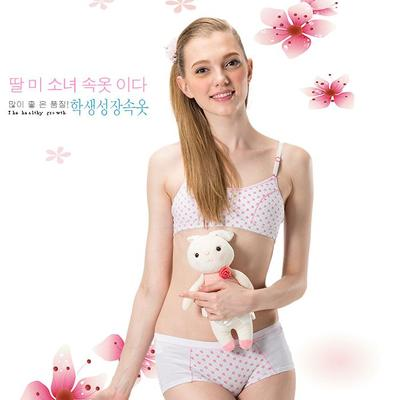 f8526760c18f4 New bra without insert girl underwear bra rims Japanese beauty together  development of urban students