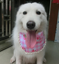 Increasing pet collar Waterproof dog pet saliva towel collar Samoyed chow chow golden retriever bib scarf