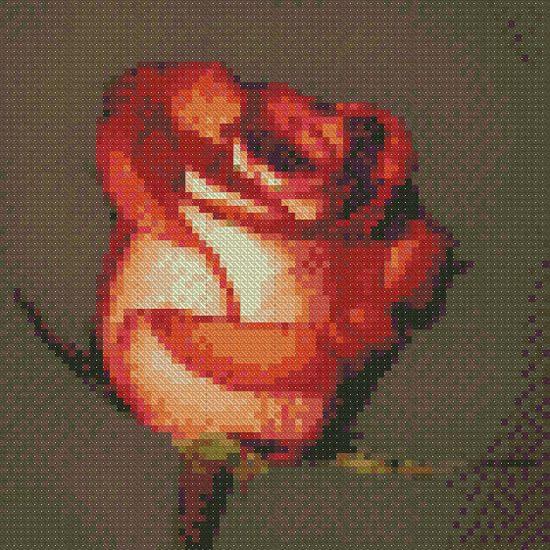 Алмаз фотографии Горячие новые бурение с игристое роз фотографии