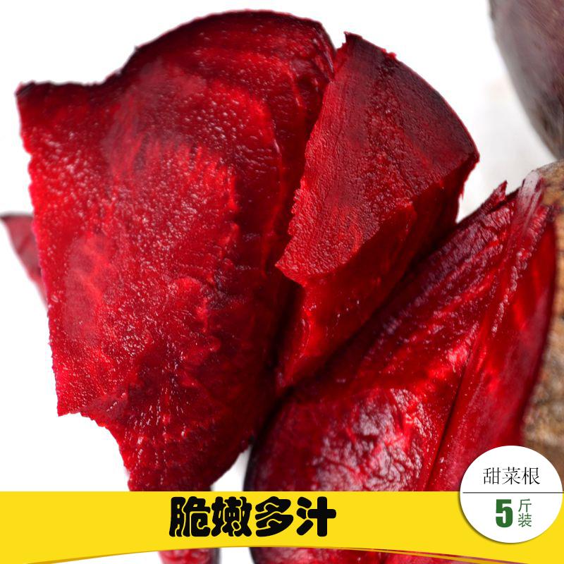 甜菜根 新鲜 净重5斤装 红菜根 糖萝卜 红甜菜 甜菜头 蔬菜