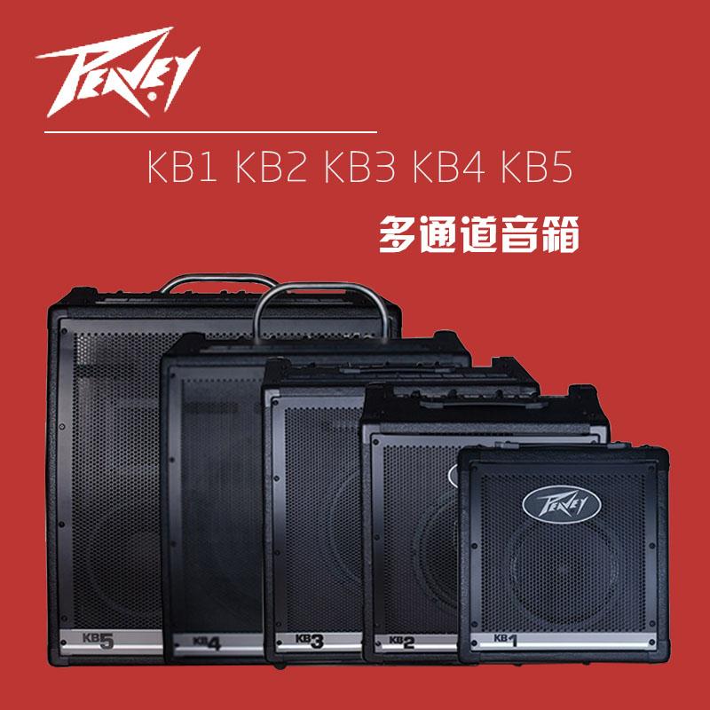 Peavey динамик KB1/KB2/KB3/KB4/KB5 больше проход (ряд) человек звук музыкальные инструменты клавиатура динамик
