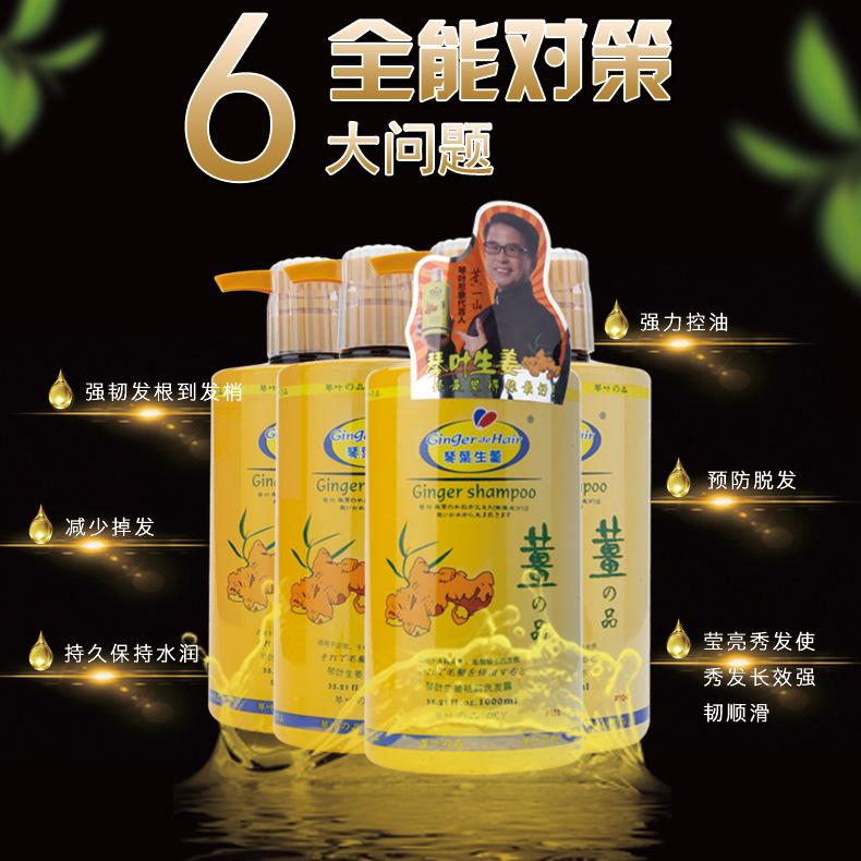 [天天特价]琴叶生姜汁防脱控油洗发水1000ml  滋养护发洗发露