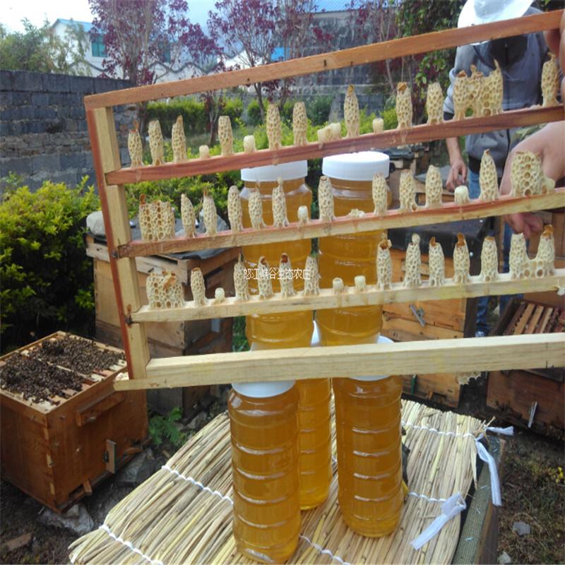 云南纯天然龙眼蜜荔枝蜜咖啡蜂蜜农家自产土蜂蜜纯正无添加纯蜂蜜