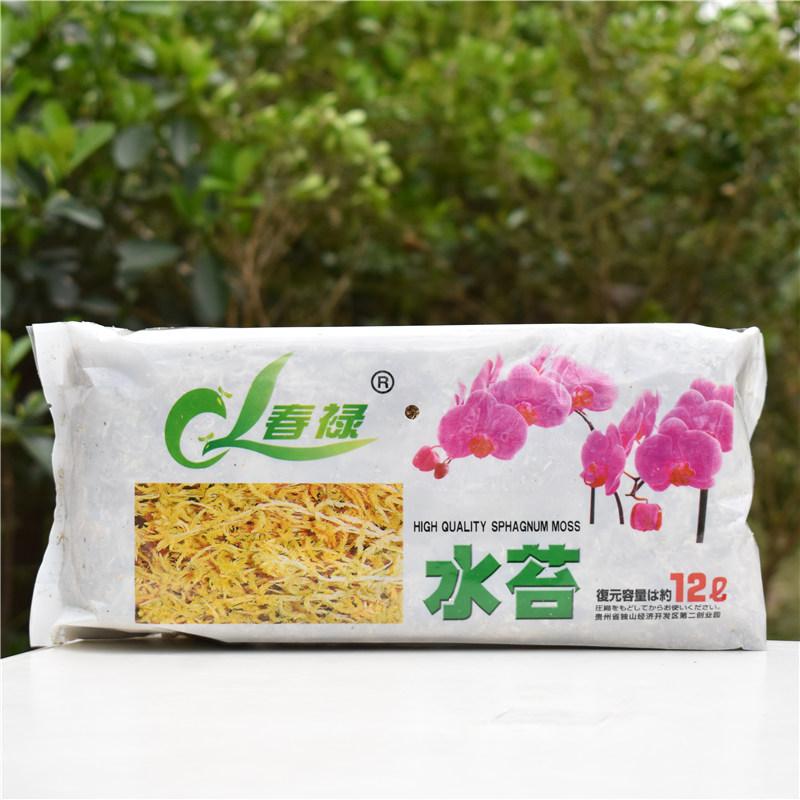 干水苔蝴蝶兰智利进口养兰花专用土多肉食虫植物水苔无菌营养土