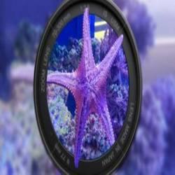 [南宁海底世界-大门票]与海洋动物亲密接触