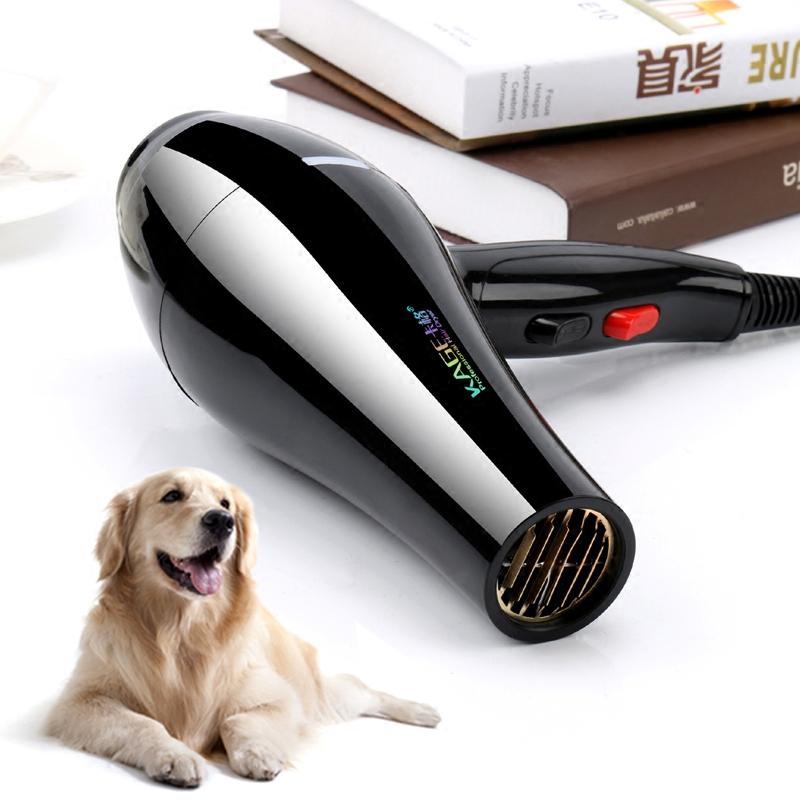 卡格寵物吹風機狗狗 大功率吹水機靜音家用大型犬金毛泰迪吹毛