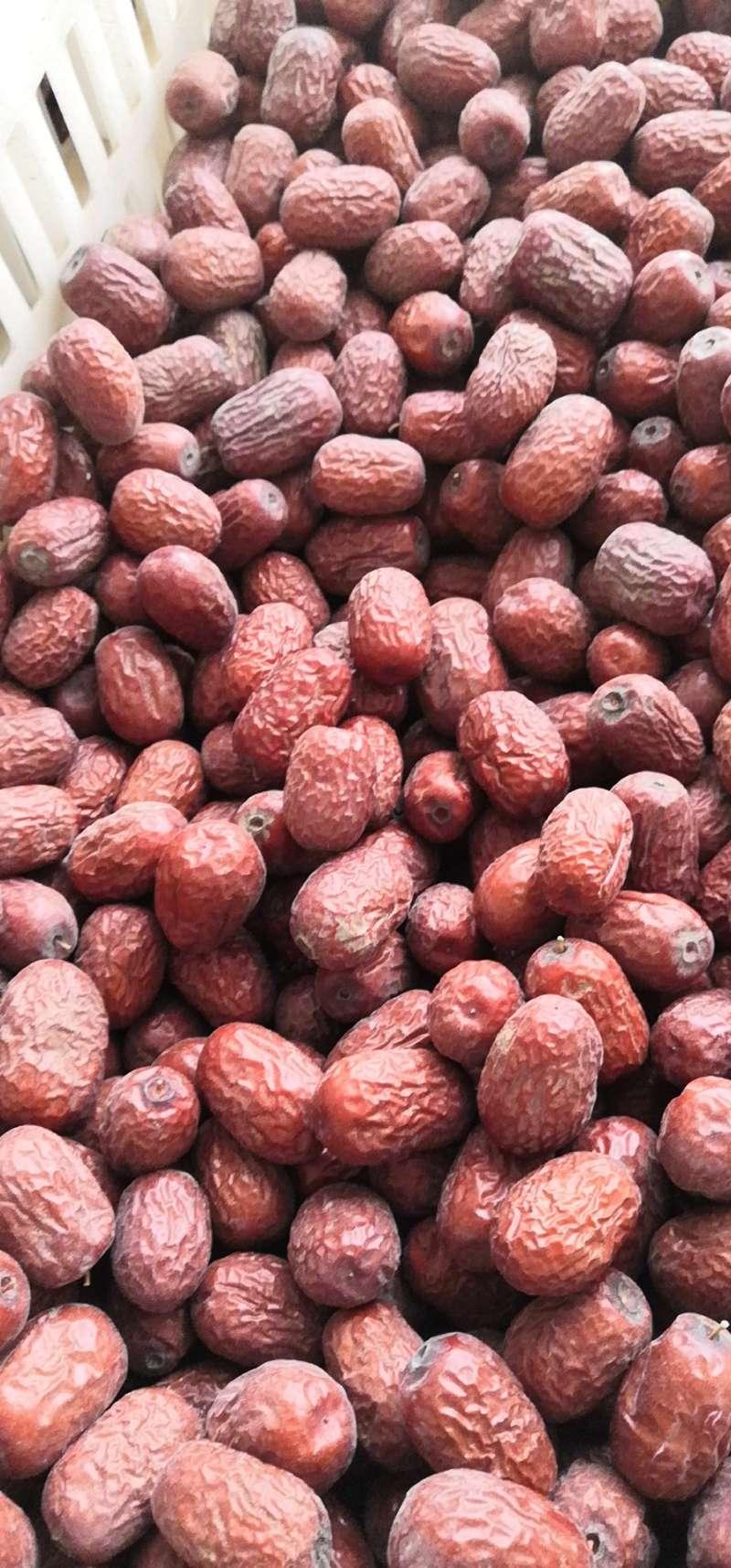 60 斤 5 斤 18 新疆若羌小灰枣未洗带灰三级小小枣粗选一箱净重