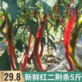 贵州红辣椒新鲜二荆条剁椒泡椒线椒用做糟辣椒豆瓣5斤应季蔬菜