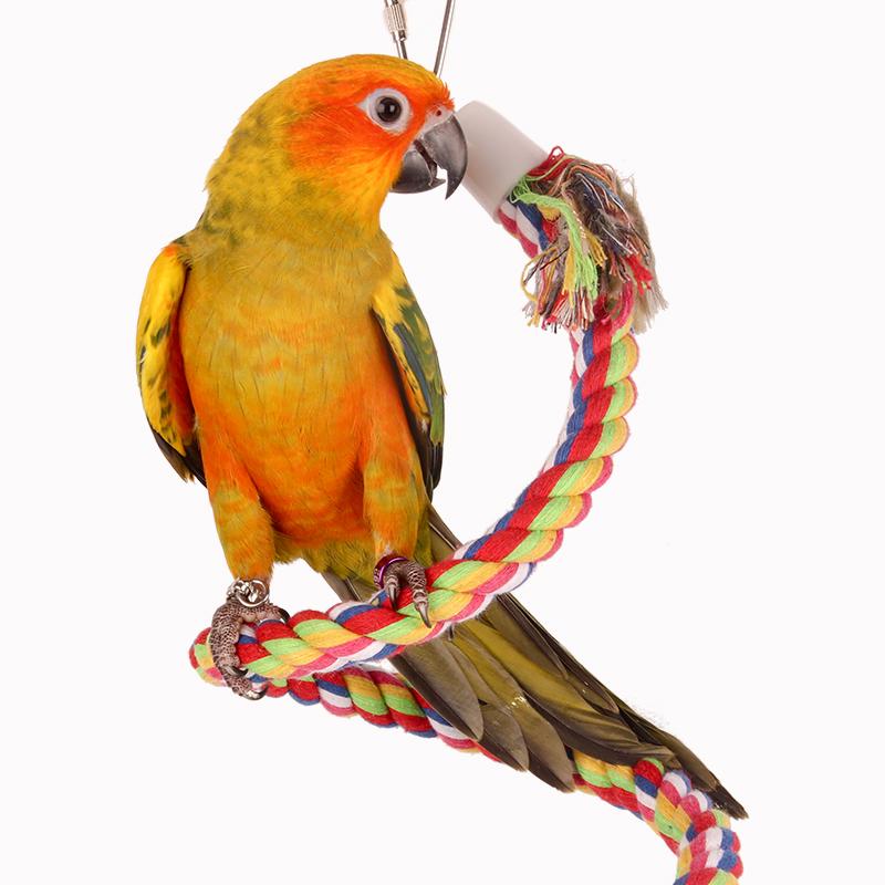 鹦鹉棉绳玩具 鸟攀爬绳索 棉绳秋千 站杆爬梯 旋转梯 啃咬玩具