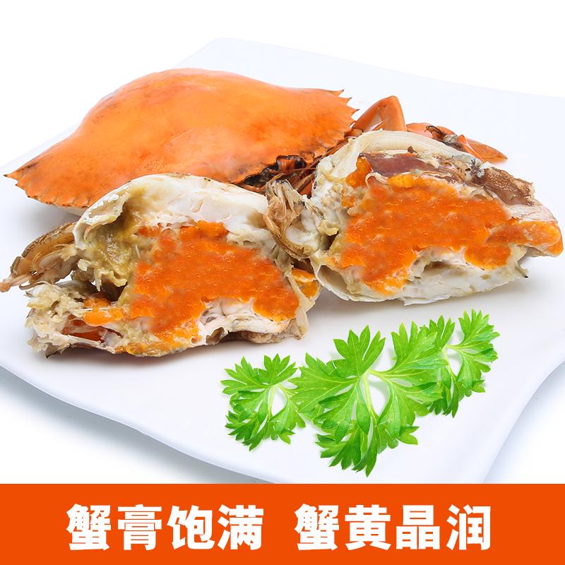 自养的正宗三门青蟹鲜活大红膏蟹母螃蟹红鲟水产海鲜海蟹顺丰包活
