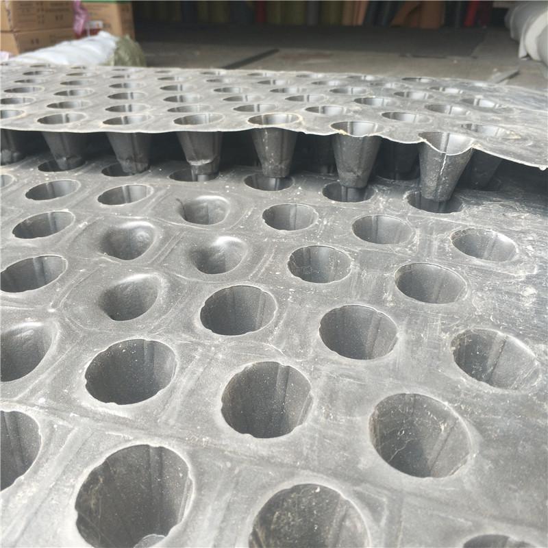 多种规格 2.0 1.6 1.0 卷排水板车库顶板绿化防水基础建材整卷尺寸