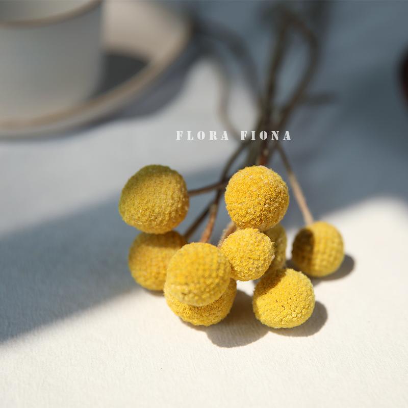 北欧软装家居装饰客厅摆设真花永生花干果天然风干植物干花黄金球