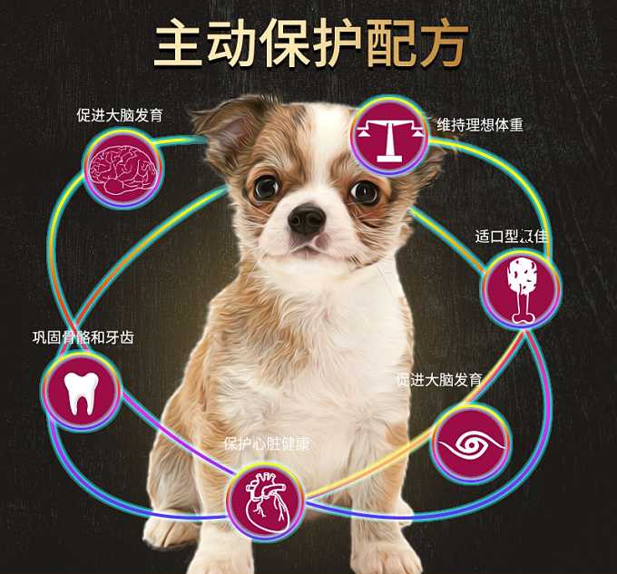 狗粮牛肉粒双拼 通用型40斤泰迪金毛哈士奇马犬中大型犬成犬幼犬优惠券