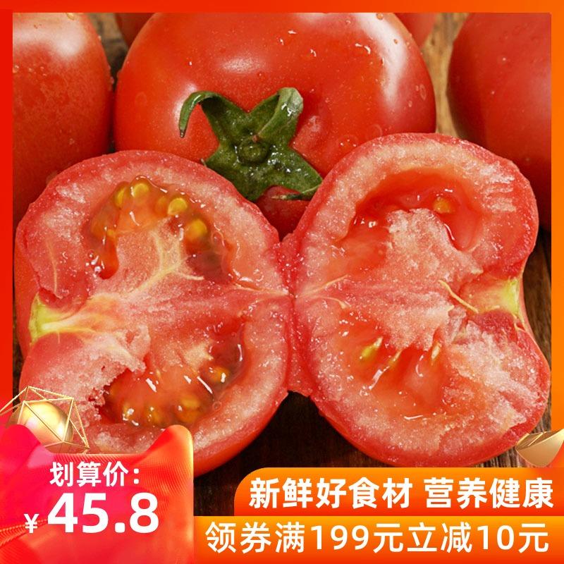 首农百年栗园 现摘沙瓤自然熟西红柿3.5斤 绿色蔬菜生吃新鲜蕃茄