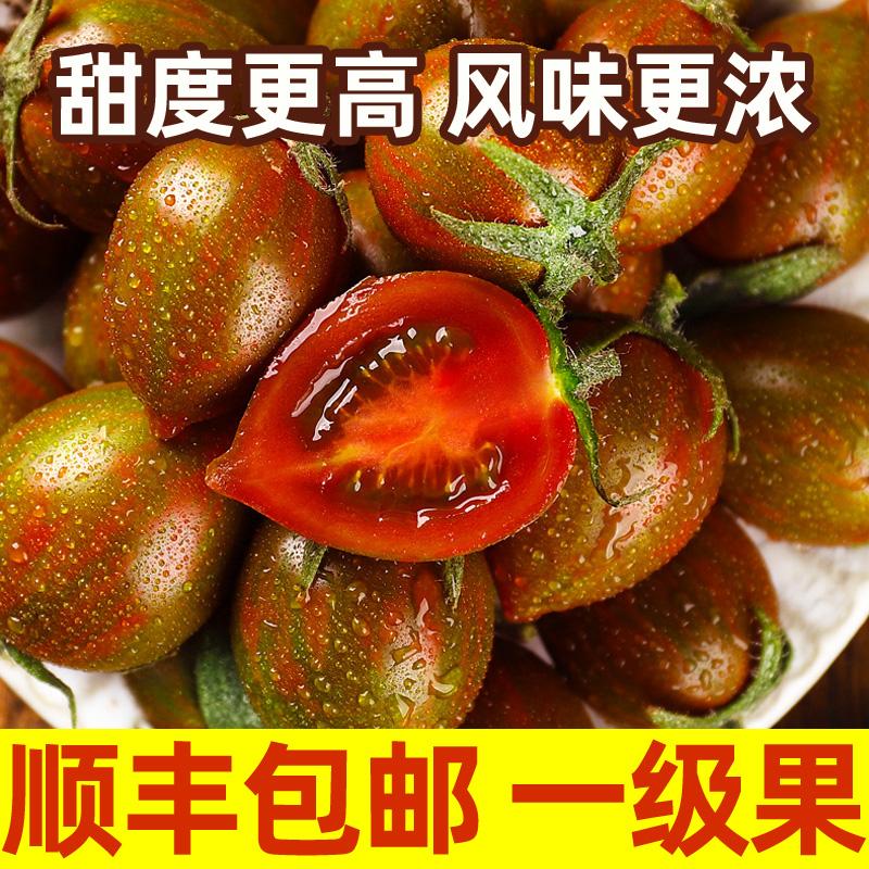 迷彩小番茄圣女果新鲜小西红柿子非海南千禧铁皮生吃水果蔬菜5斤