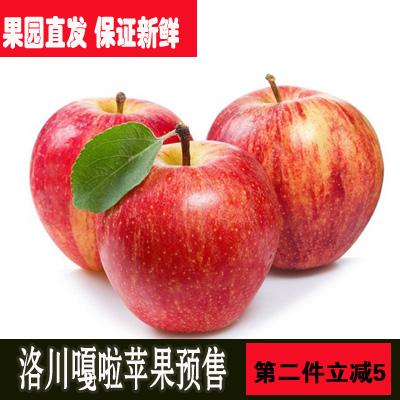 2019新果当季时令洛川脆甜嘎啦水果10斤包邮非陕西水果苹果红富士