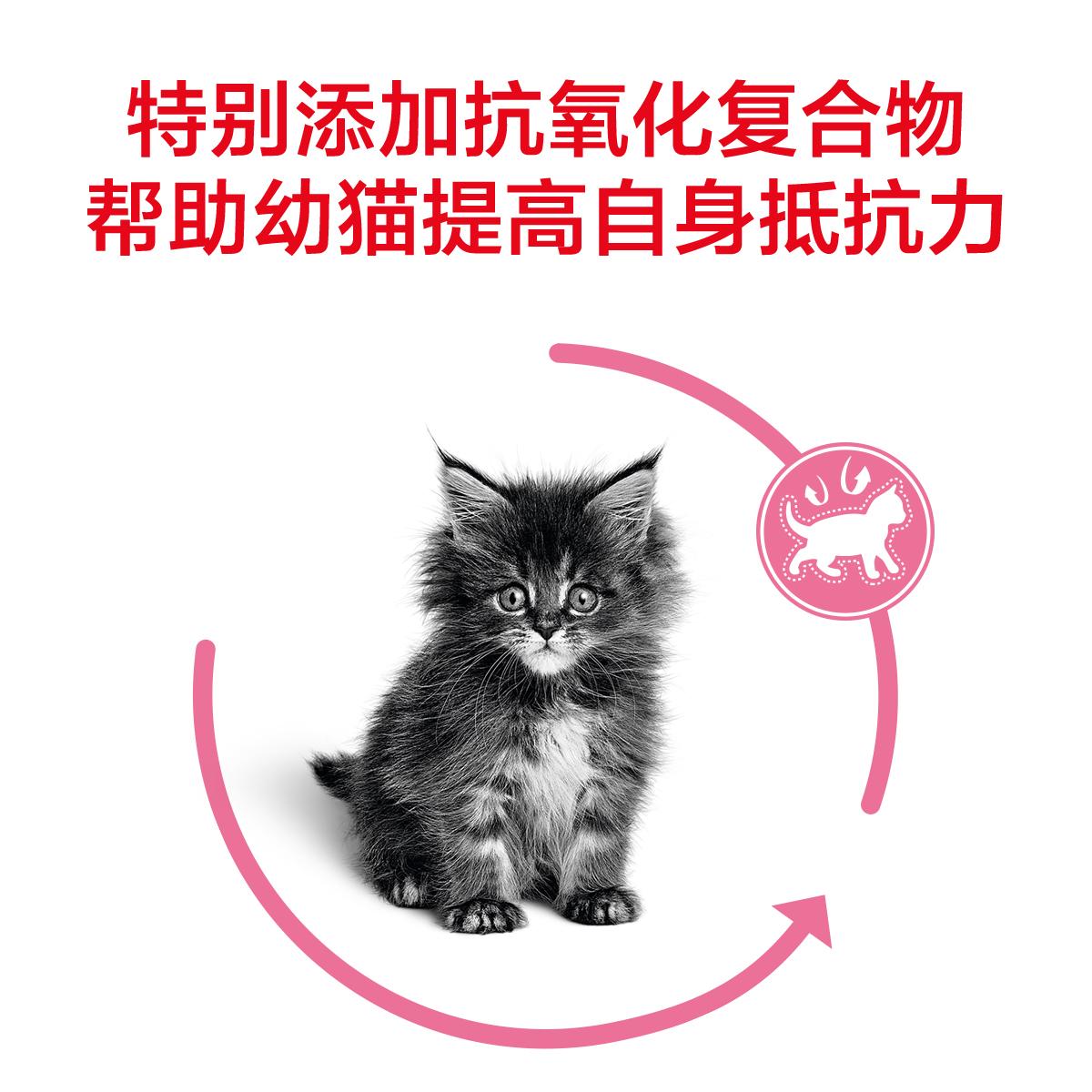 皇家k36皇家幼猫猫粮10公斤猫粮猫咪英怀孕宠物猫美短英短猫10KG优惠券