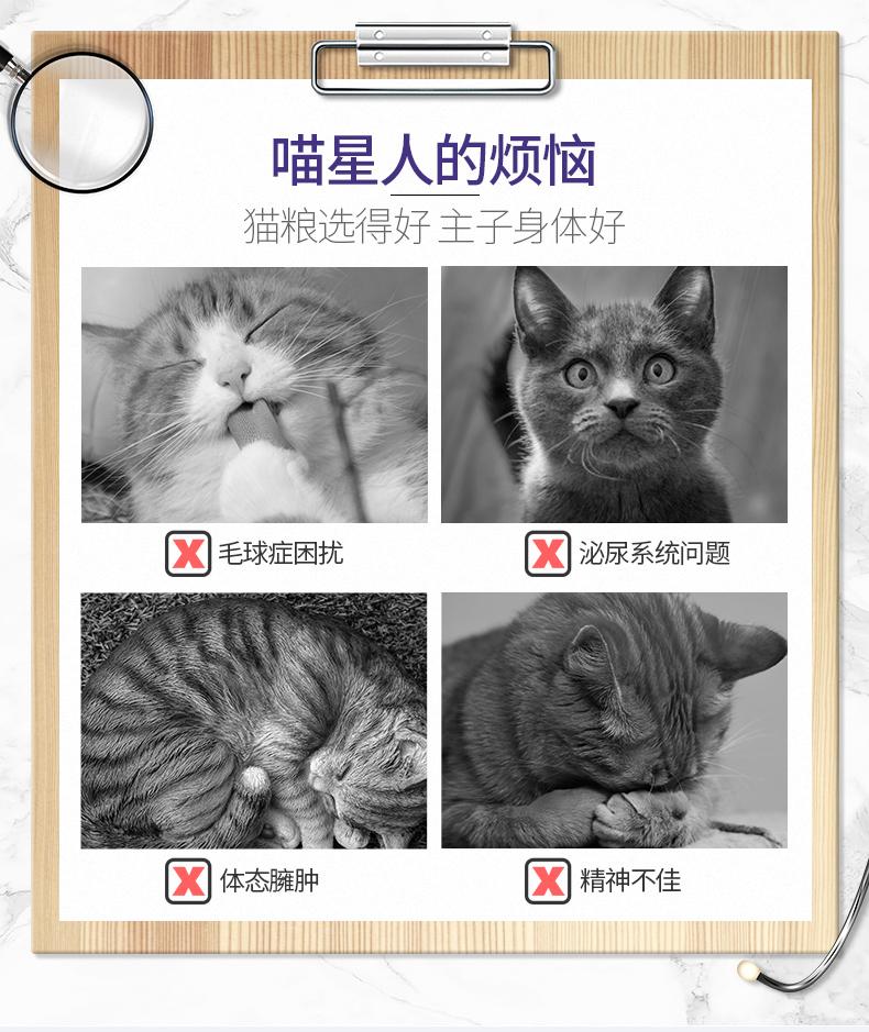 伯纳天纯猫粮10kg成猫天然无谷猫粮20斤加菲折耳田园英短蓝猫布偶优惠券
