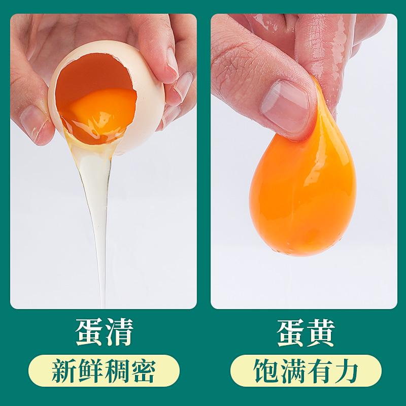 辽宁黑山土鸡蛋农家散养新鲜农村柴鸡蛋可生食东北溜达笨鸡蛋40枚