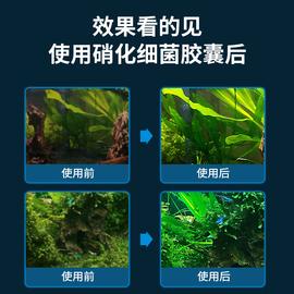 宣歌硝化细菌胶囊鱼缸净水剂消化细菌干粉高浓缩养鱼用品净化活菌