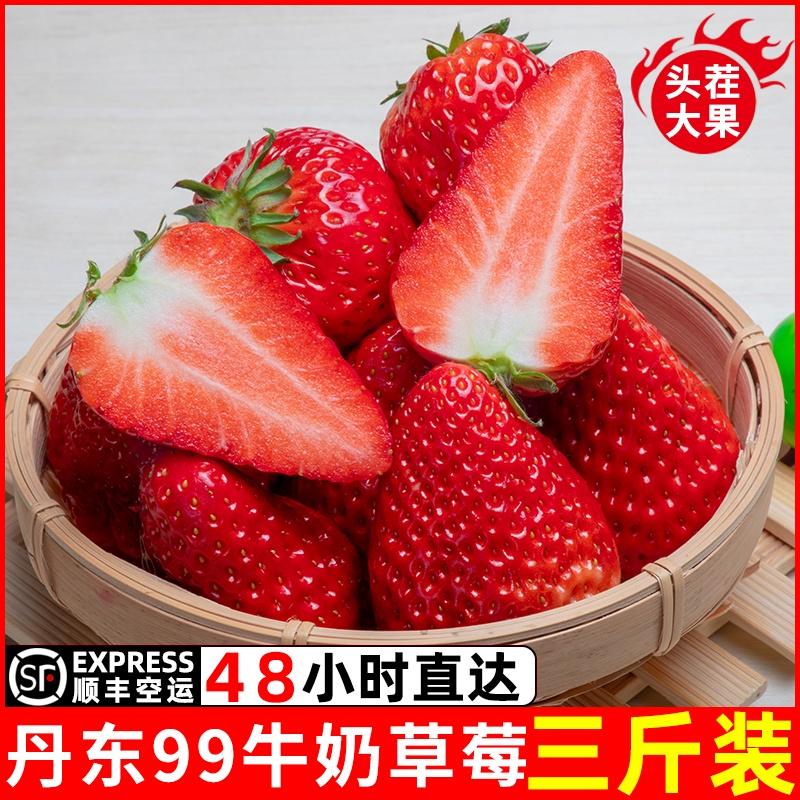 丹东99草莓新鲜牛奶九九红颜草莓现摘现发孕妇奶油顺丰包邮大水果