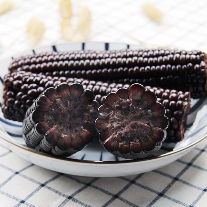 东北黑玉米即食玉米营养代餐黏粘紫甜玉米棒早餐玉米一份约2000g