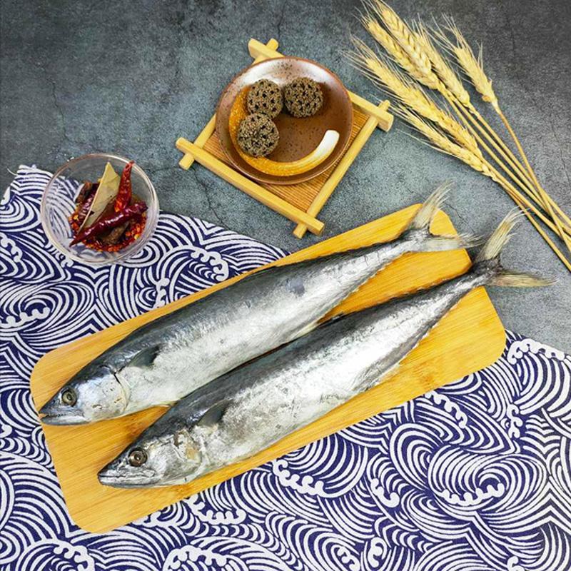 新鲜鲅鱼整条海鲜冷冻水�产1000g东海野生马鲛鱼包邮深海鱼