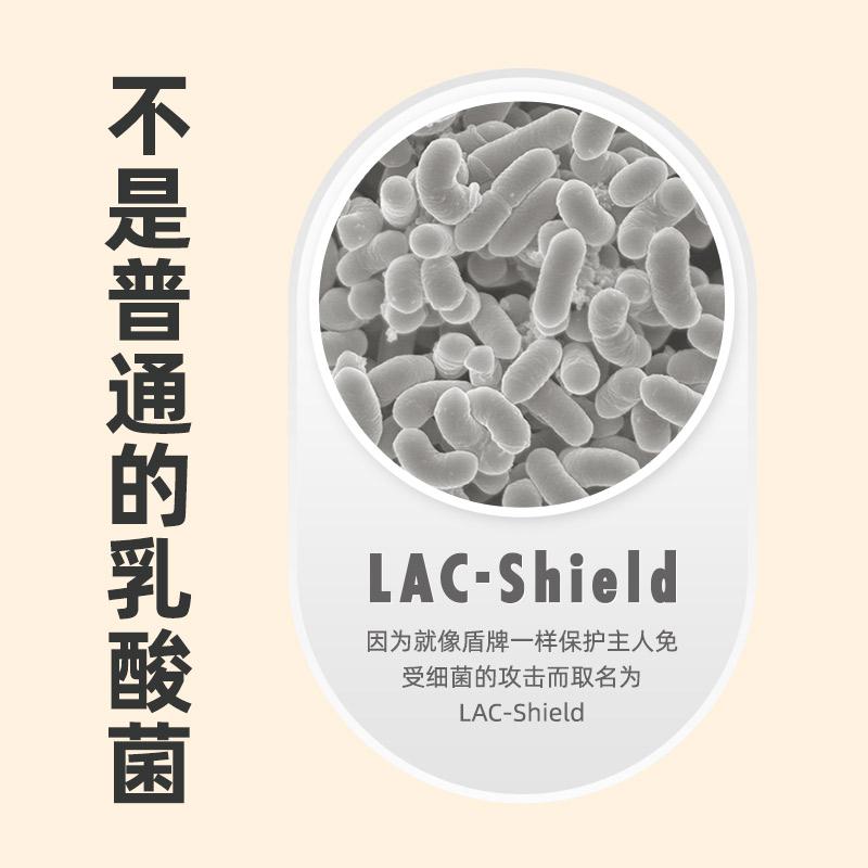 日本进口森永乳酸菌奶片小零食糖果酸奶味儿童益生菌含片盾牌奶片