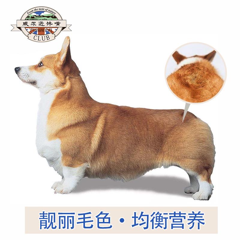 柯基幼犬成犬狗粮柯基犬专用狗粮科基增肥小型犬狗粮天然粮10斤装优惠券