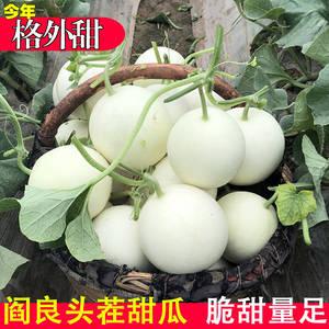 阎良甜瓜带箱10斤新鲜包邮应季水果香瓜当季时令生鲜小甜脆瓜