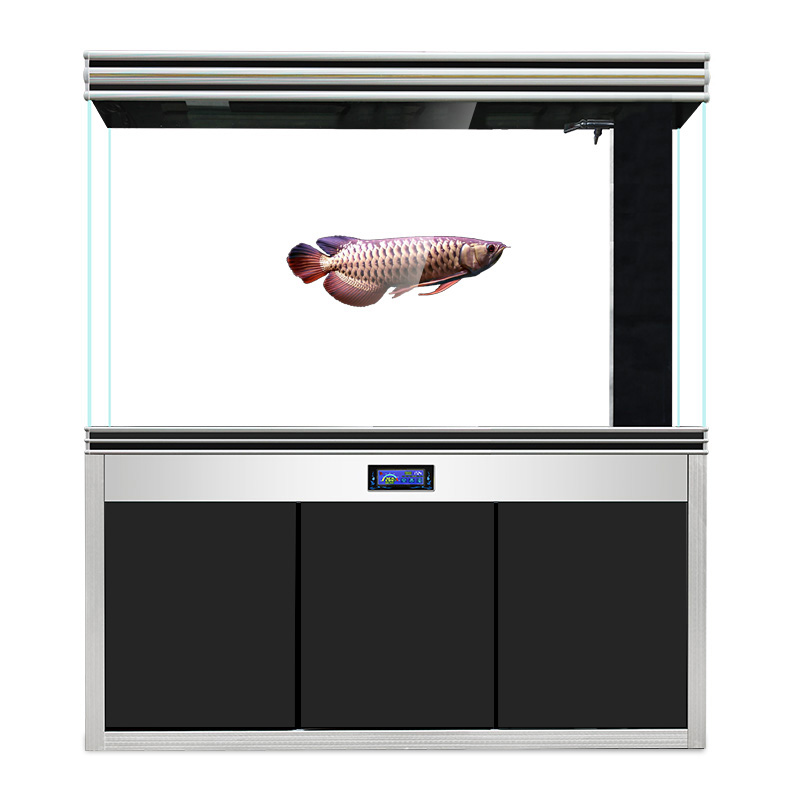 迪顺超白玻璃鱼缸底滤水族箱大型龙鱼缸客厅免换水长方形家用屏风