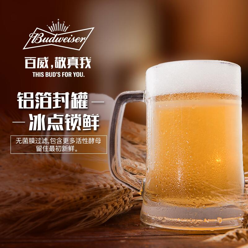 罐装小麦生啤酒整箱促销包邮 24 330ml 百威啤酒纯生 Budweiser